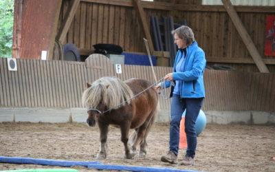 Der 5‑Minuten-Podcast: Mein Pferd geht nicht vorwärts!